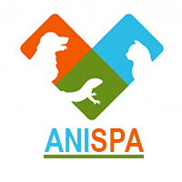 AniSpa